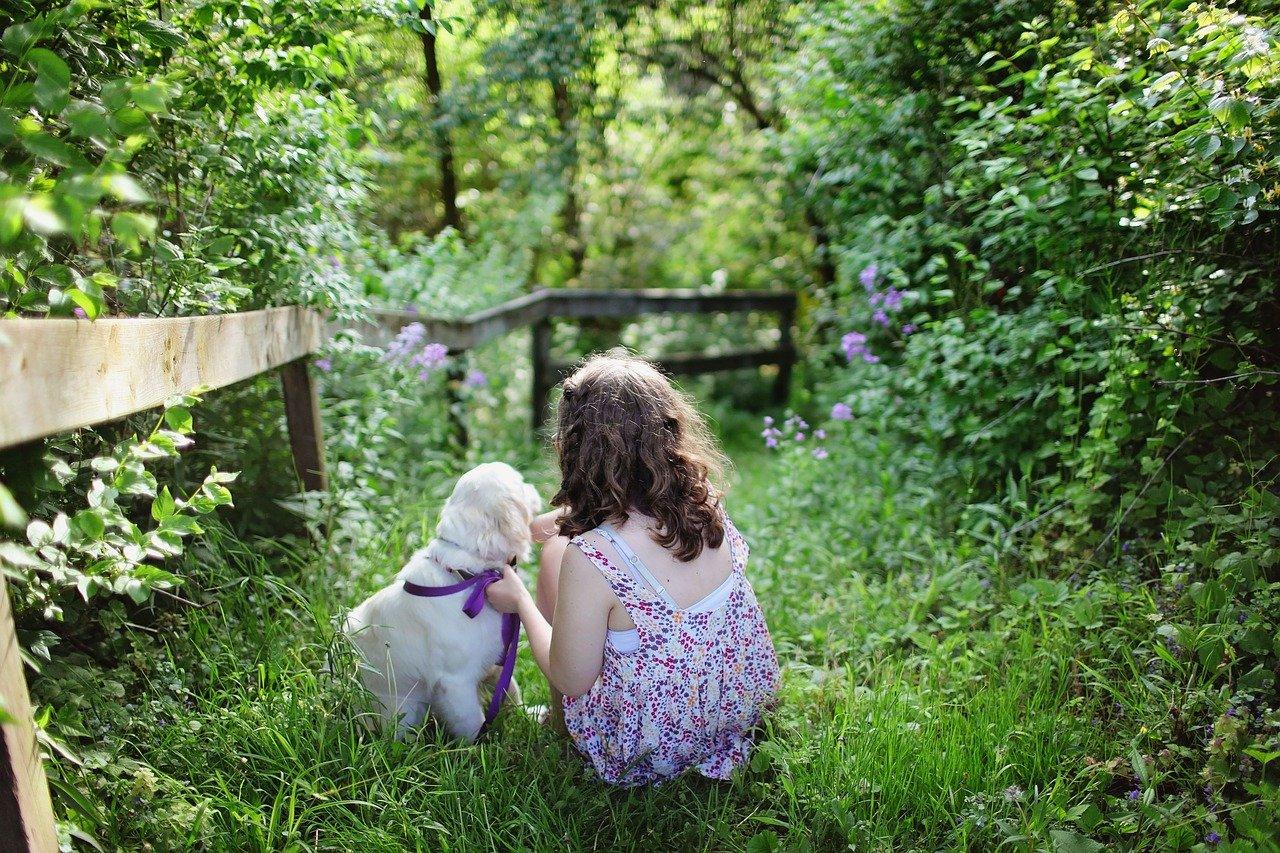 child, dog, pet-1867463.jpg